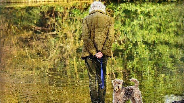 W jaki sposób wybrać odpowiedni dom opieki dla seniora?
